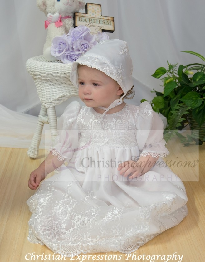 Embroidered Organza Christening Gowns for Girls